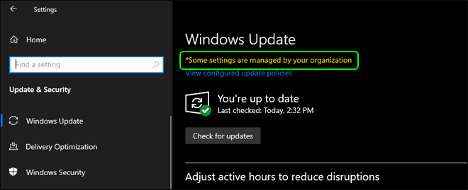 Automatic Windows Updates Disabled Successfully