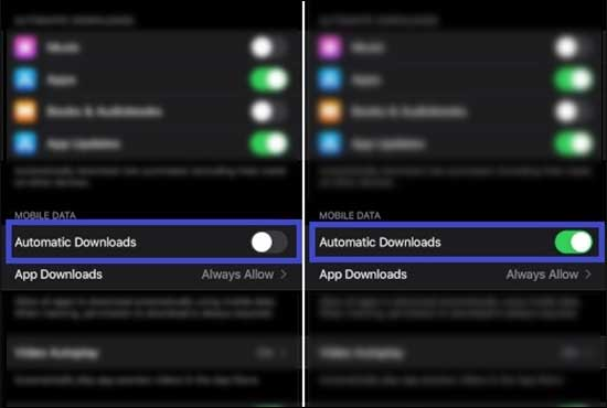 Enable Automatic Downloads To Enable Auto Download Of Purchased Apps