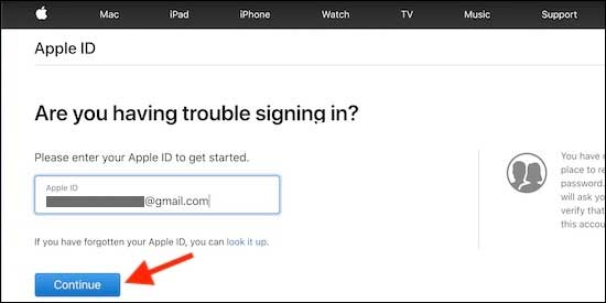 Go To Apple Support Portal And Enter Your Apple Email And Click Continue